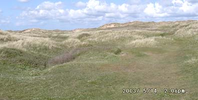 The sand dune system at Aberffraw, Anglesey.
